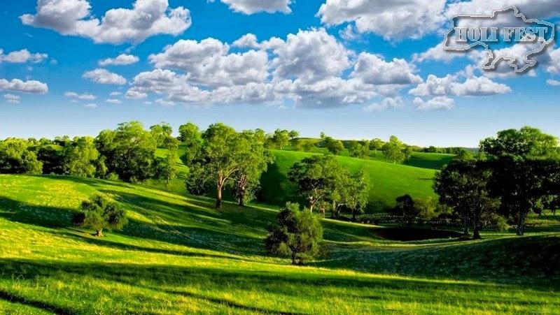 Зеленый-мир